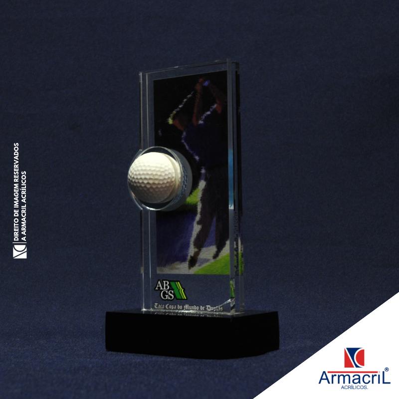 Troféu em Acrílico para Personalizar Melhor Preço Cupecê - Troféu de Acrílico em Branco